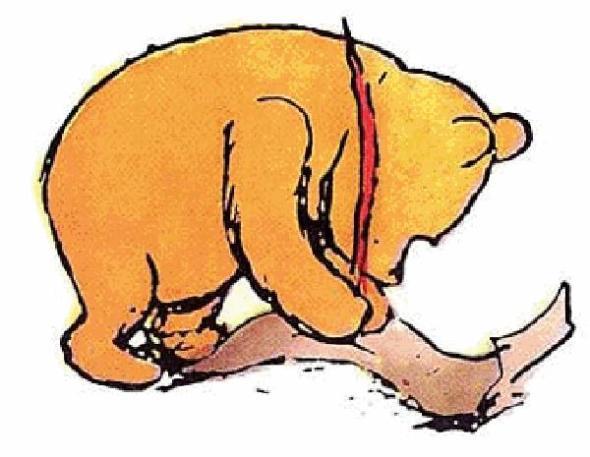 writing bear